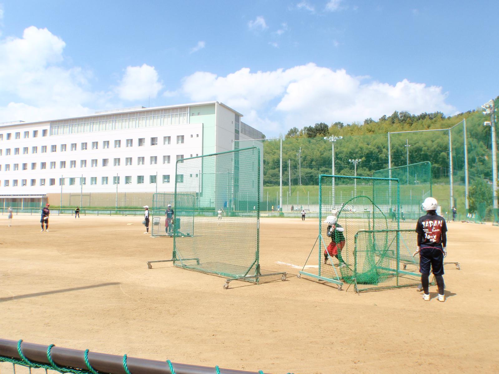 大学 連盟 ボール 全日本 ソフト