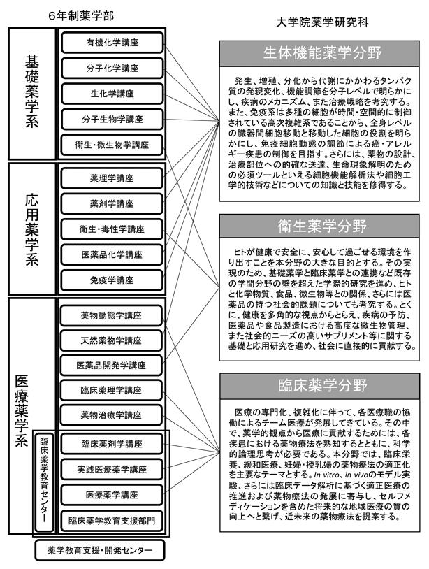図:大学院薬学研究科と6年制薬学部教育の構成
